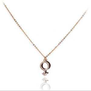 Rose gold simple symbol crystal necklace